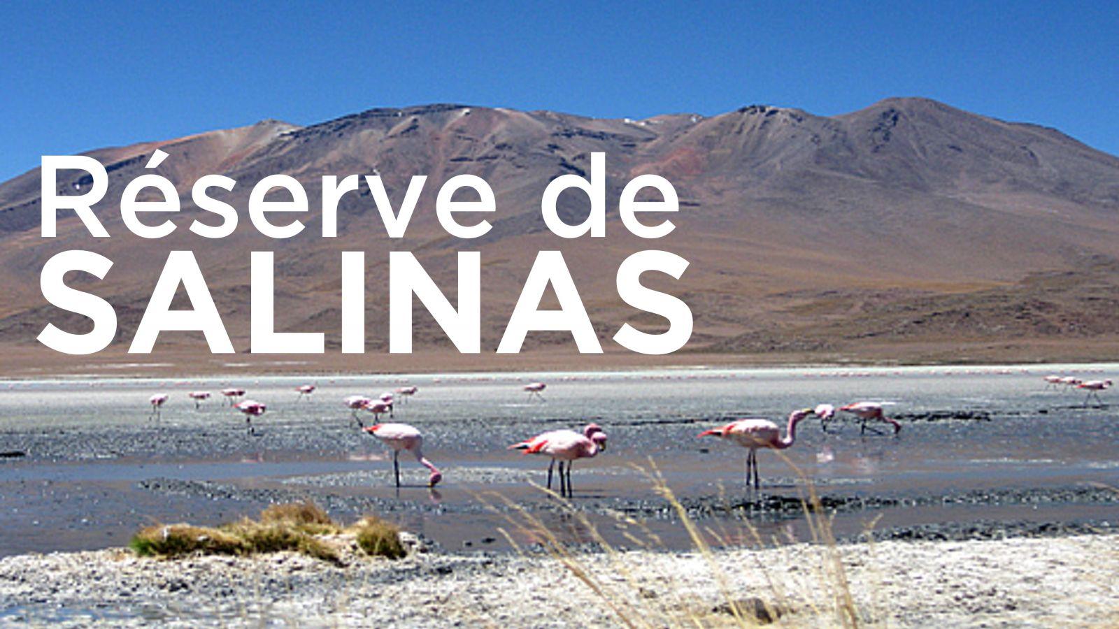 Voyage initiatique Salinas