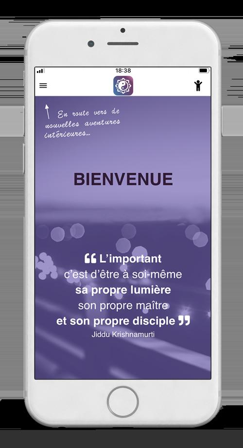 Meestik Application Mobile
