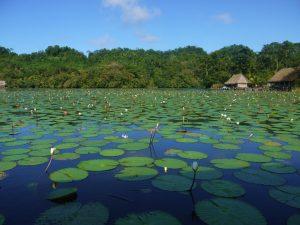 voyage pleine conscience guatemala 17 méditation